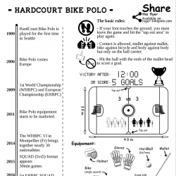 Flyer Bike Polo